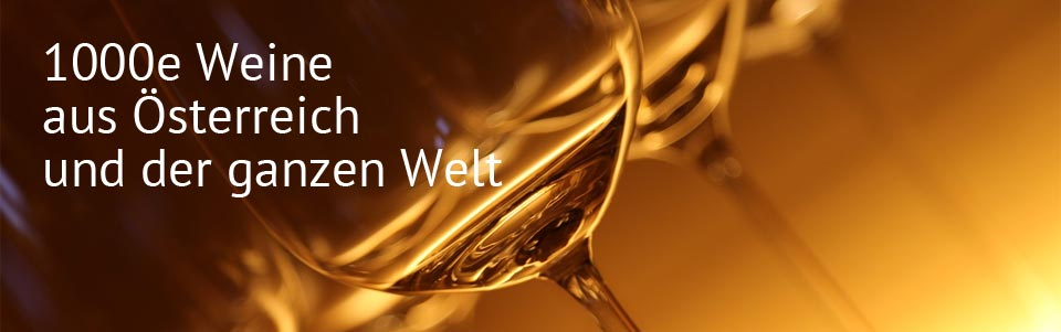 Wirt am Berg, Wels, Catering
